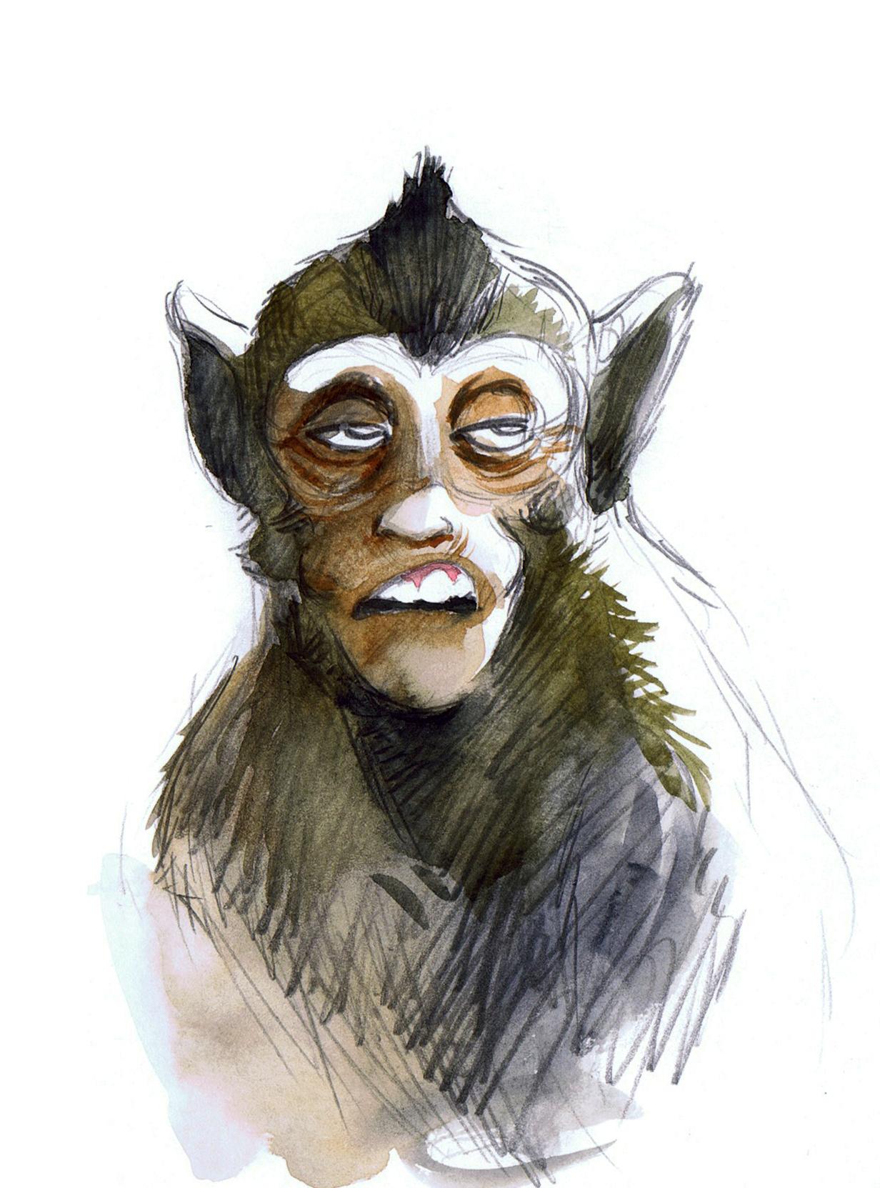 Angkor's Monkey