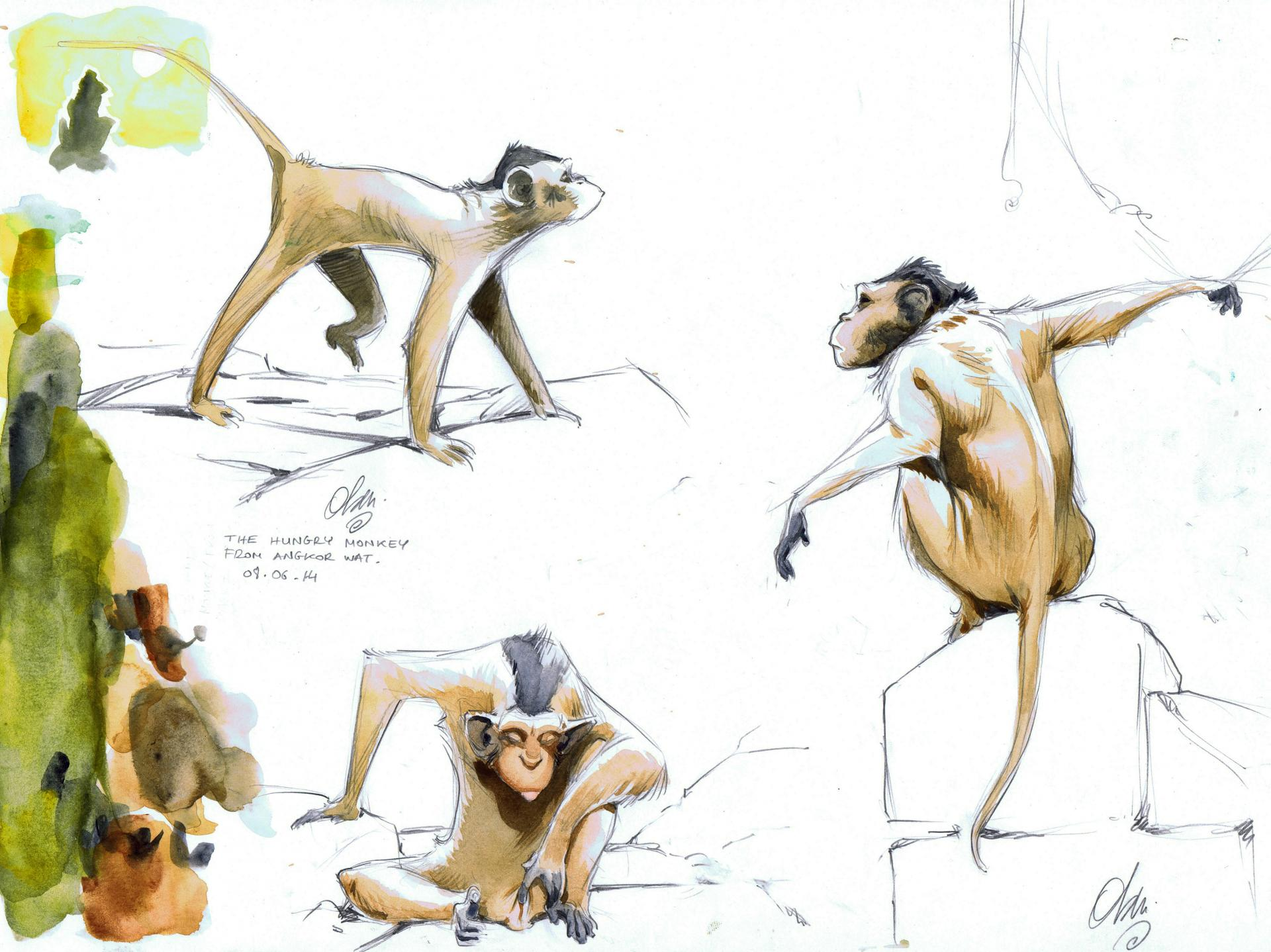 Angkor's Monkeys