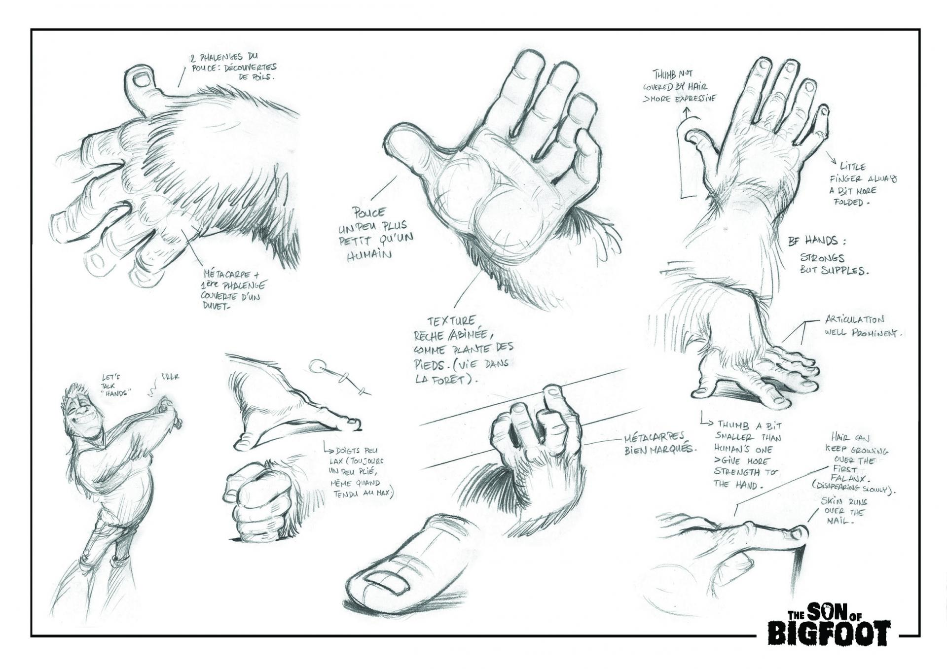 Bigfoot - Hands studies